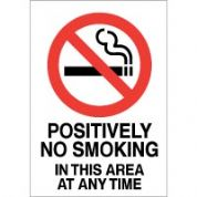 No Smoking safety sign - Positively No 033